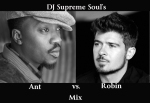 DJ Supreme Soul's Ant vs Robin Mix